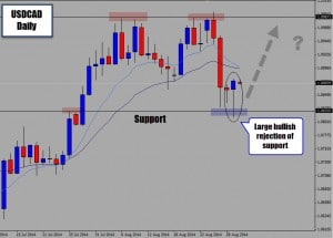 Price Action Buy Signal From Support on USDCAD