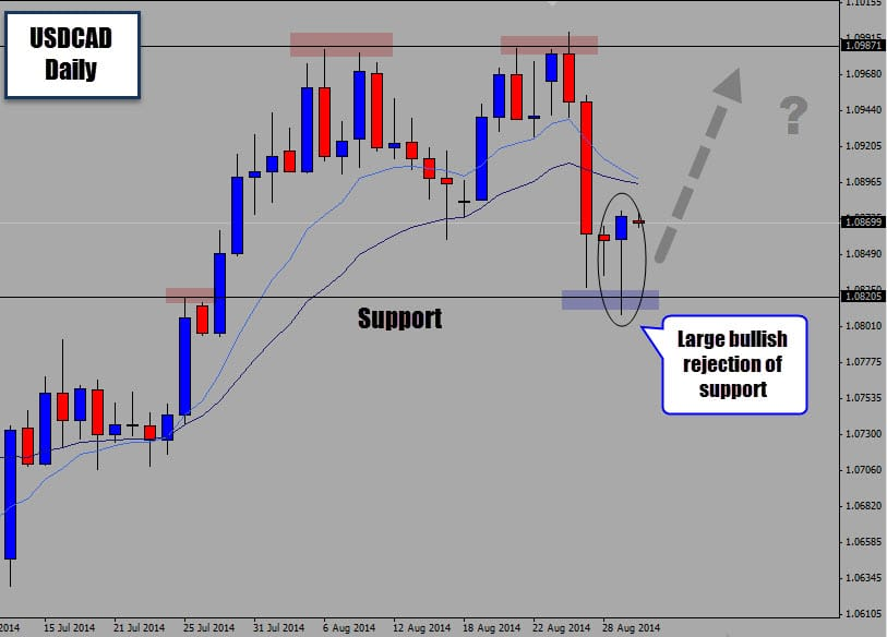 bullish forex signal at support
