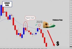 eurnzd profitable outcome