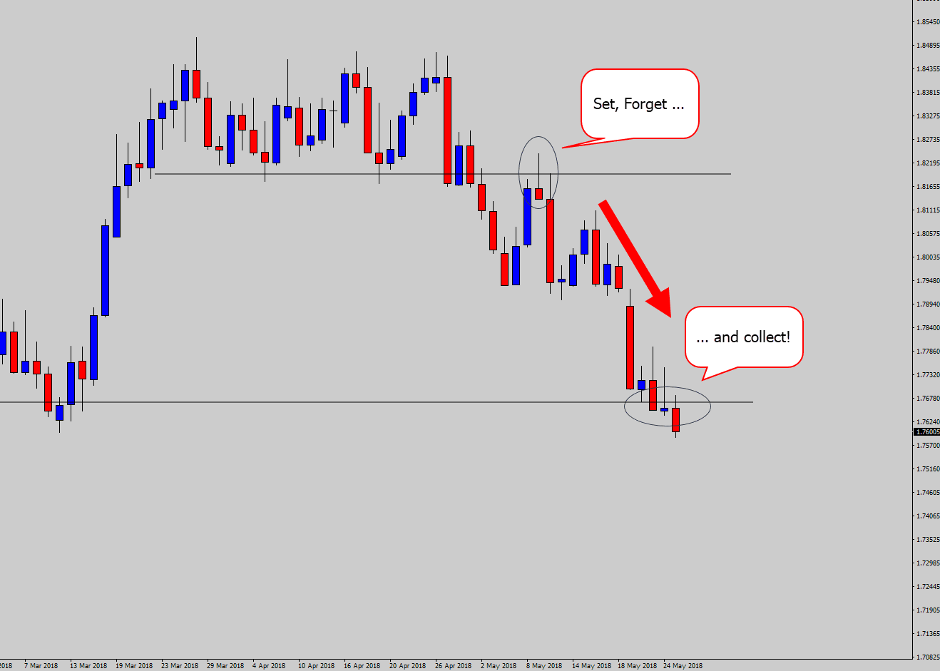 price action signal step 5 set forget collect