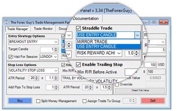 trade panel straddle options